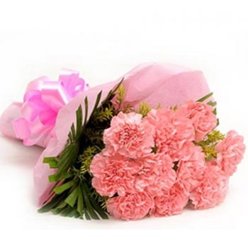 12 Pink carnations bouqet
