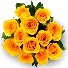 Send Flowers to Gwalior