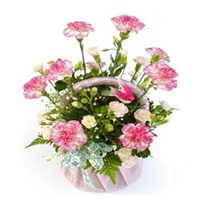 Flowers Carnation Basket-flower delivery Delhi