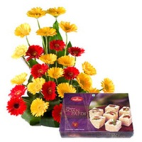 Gerbera with soan papdi