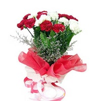 14 Red and White carnations