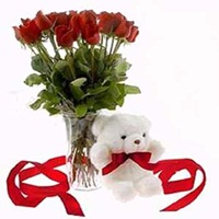 12 ROSES WITH TEDDY BEAR
