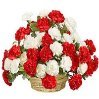 30 Red n White Carnations Basket - Valentine Gifts to India