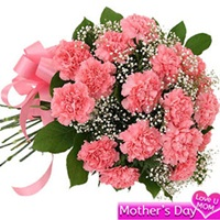 Flowers Bouquet of 20 pink carnations