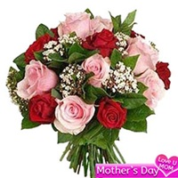 Red and Pink rose surprise