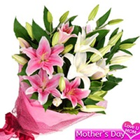 Flowers Bouquet of 6 pink and white oriental lilies