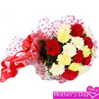 Flowers Bouquet of 20 mix color carnations