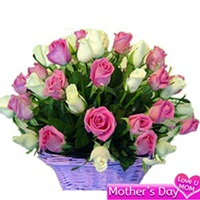 Basket of 30 pink and white roses
