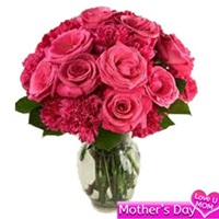 Pink roses and carnation vase