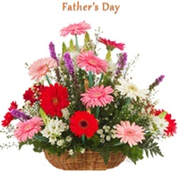 12 mix color gerbera basket