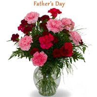 15 red and pink carnations in vase