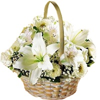Basket of 12 White Carnations and Lilies