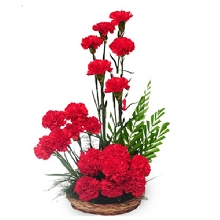 Basket Of Red Carnations
