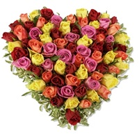 Muticolor Heart Shape Roses