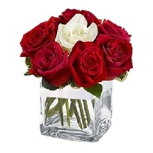 11 Red N 1 White Roses In a Glass Vase