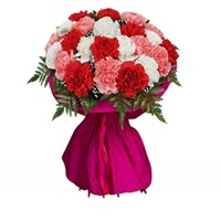 Flowers bouquet-Carnations Carnival-Flowers online Banglore