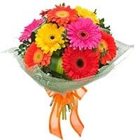 8 Mix gerbera bouqet