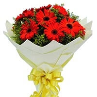 12 red gerbera bouqet