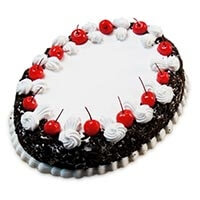 Oval Blackforest Cake